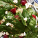 The Spicy Olive's Spinach-Grape Salad